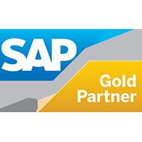 SAP Gold Partner - VisionSoft